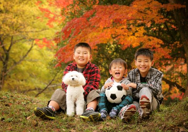 秋の紅葉ロケ撮影三兄弟写真